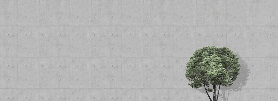 Murs-Beton-960x350-sans-text